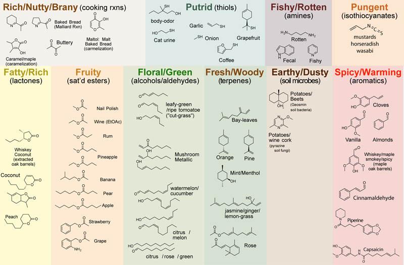 Plant-Chem-2 aromas-v5