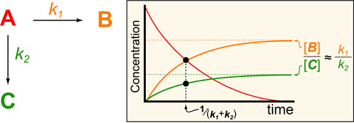 catalysis-kinetics-intuition-v6