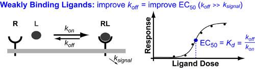 kinetic-limits-on drug-design-v1