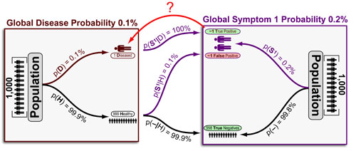 Disease Probability from Symptoms