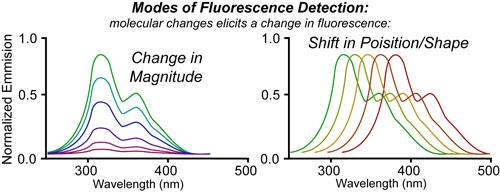 10 Fluorescence Sensitivity