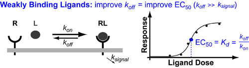 kinetic-limits-on drug-design-v1
