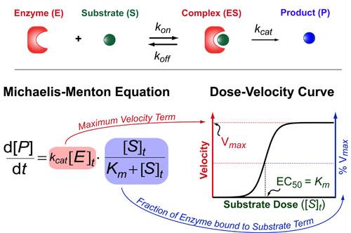 Kinetic-Thermodynamic Models Overview-v1