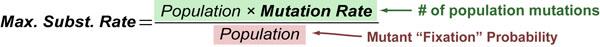 pop-mutation-rate-v06