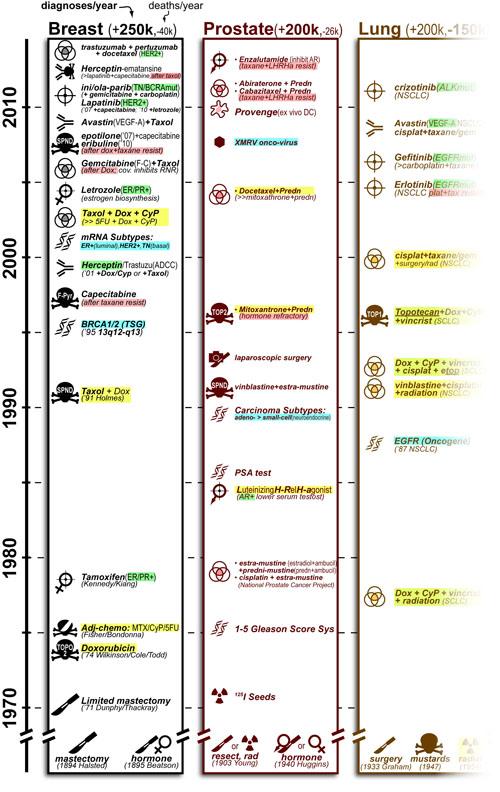 FIGURE-chemo-timeline-v26-03-op